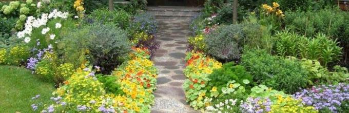 цветочная клумба грядка цветник вдоль дорожки