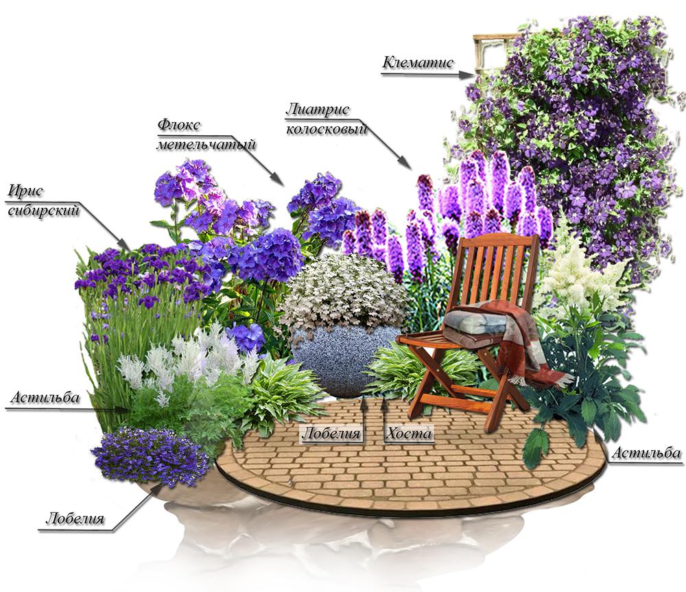 Контрастный цветник: сочетание синего и белого в саду